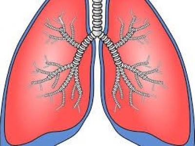 Riabilitazione respiratoria e osteopatia post-Covid19