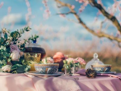 I migliori tipi di tè e tutti i suoi benefici